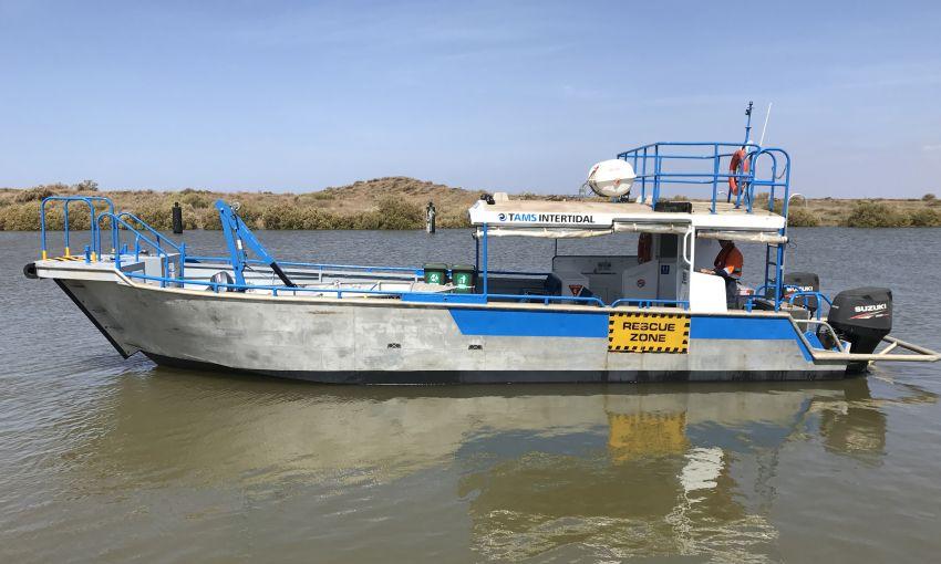 Tams Intertidal